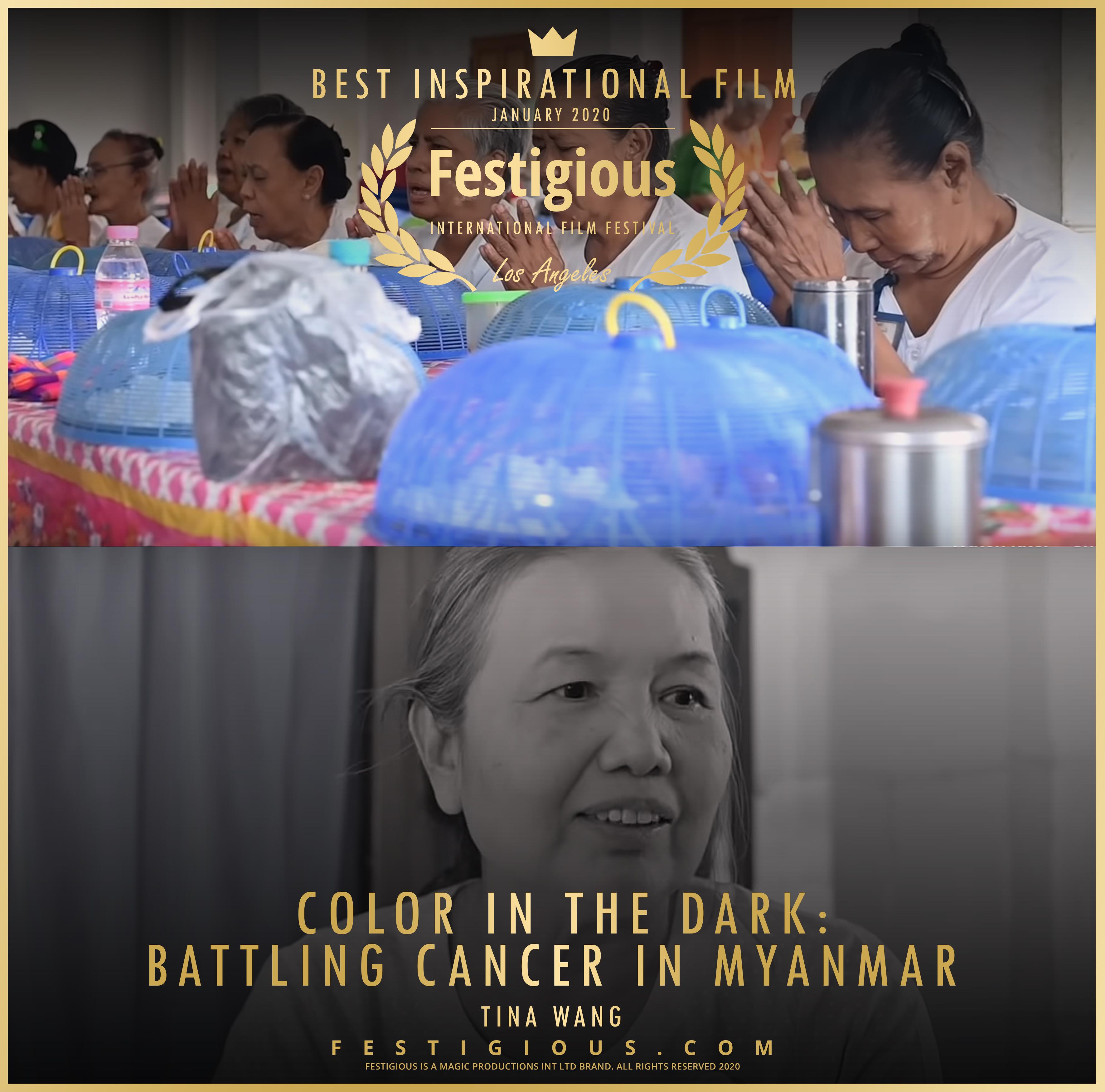 Color in the Dark Battling Cancer in Mya