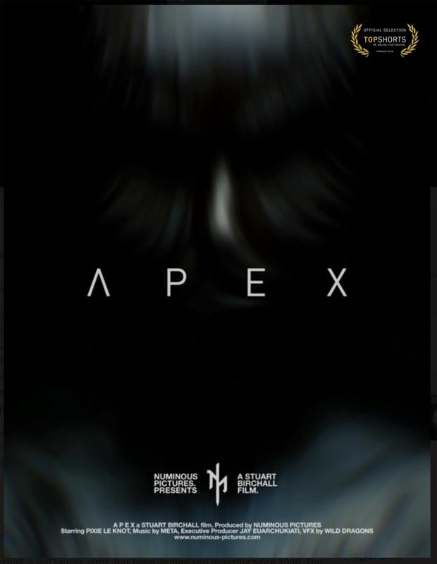 A P E X Poster