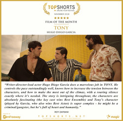 2018 11 Film of the Month - Tony