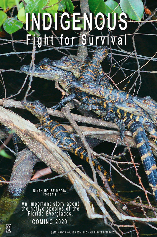 Indigenous Fight for Survival