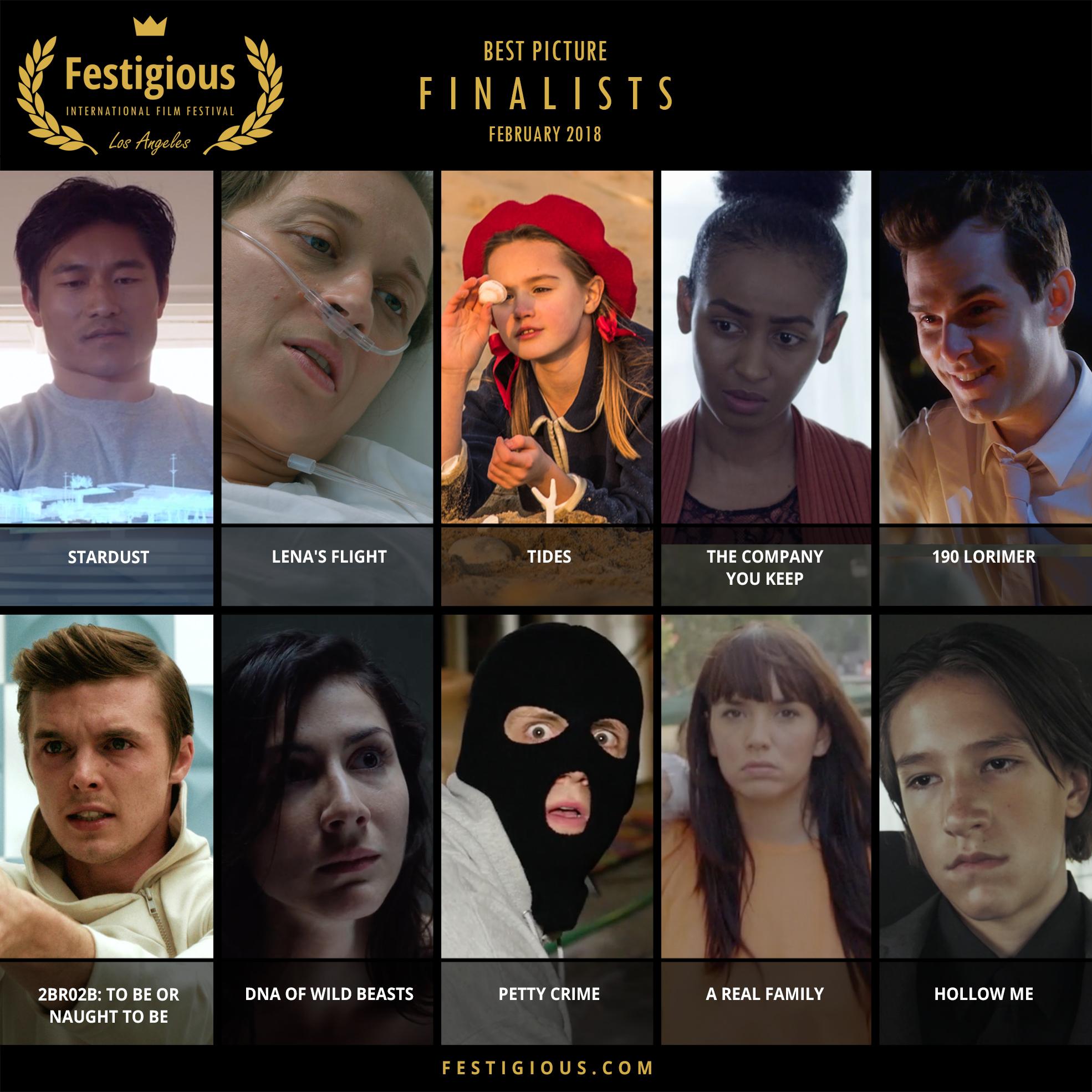 FESTIGIOUS FINALISTS 2018 02