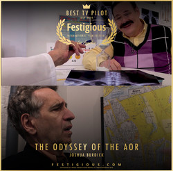 THE ODYSSEY OF THE AOR design