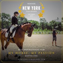 My Horse, My Passion design