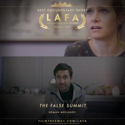 THE FALSE SUMMIT design