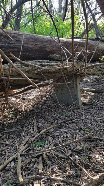 Sacred Desecration: Washington Park Cemetery