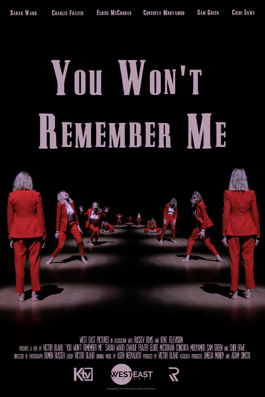 You Won't Remember Me