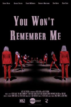 You Won't Remember Me