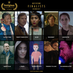 FESTIGIOUS FINALISTS 2017 12
