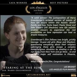 STARING AT THE SUN - LAFA Best Picture - Review - Copy