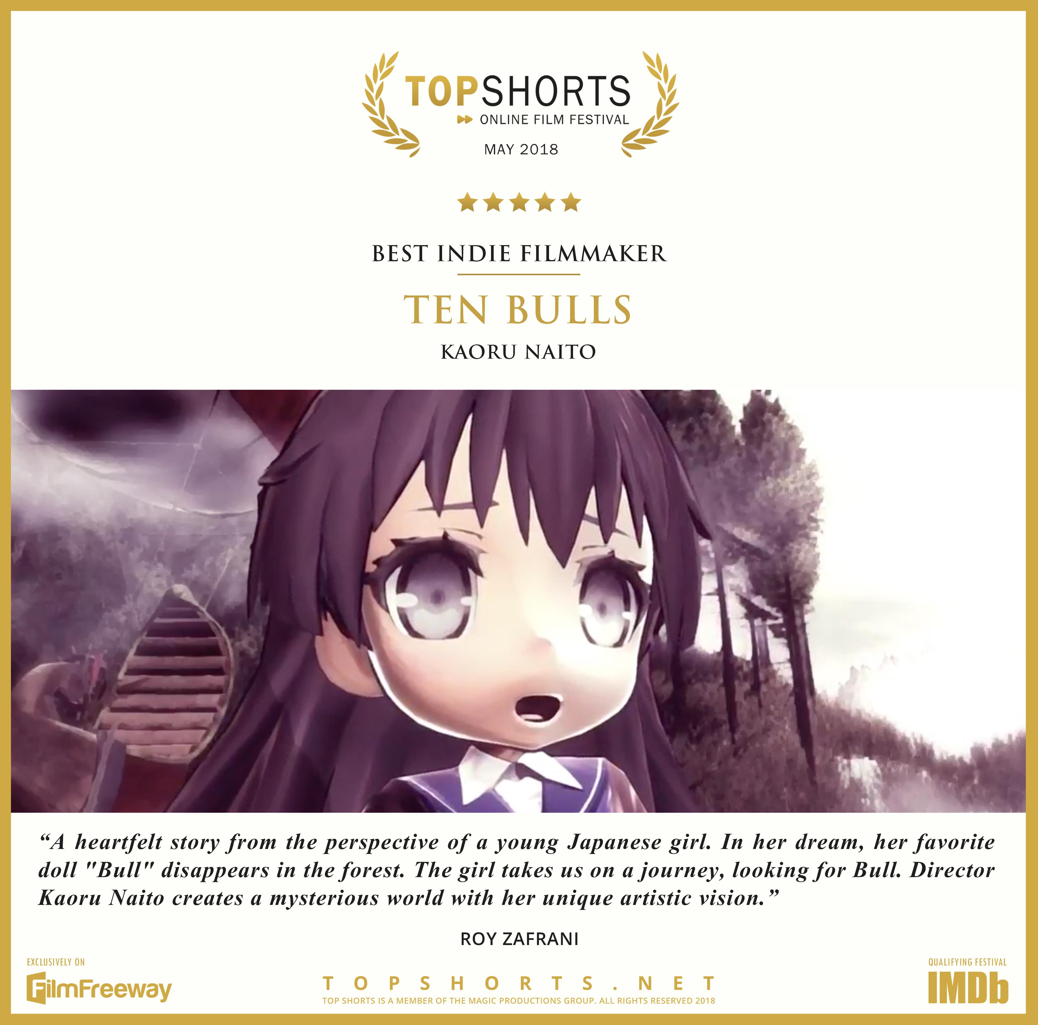 2018 05 Best Indie Filmmaker - Ten Bulls