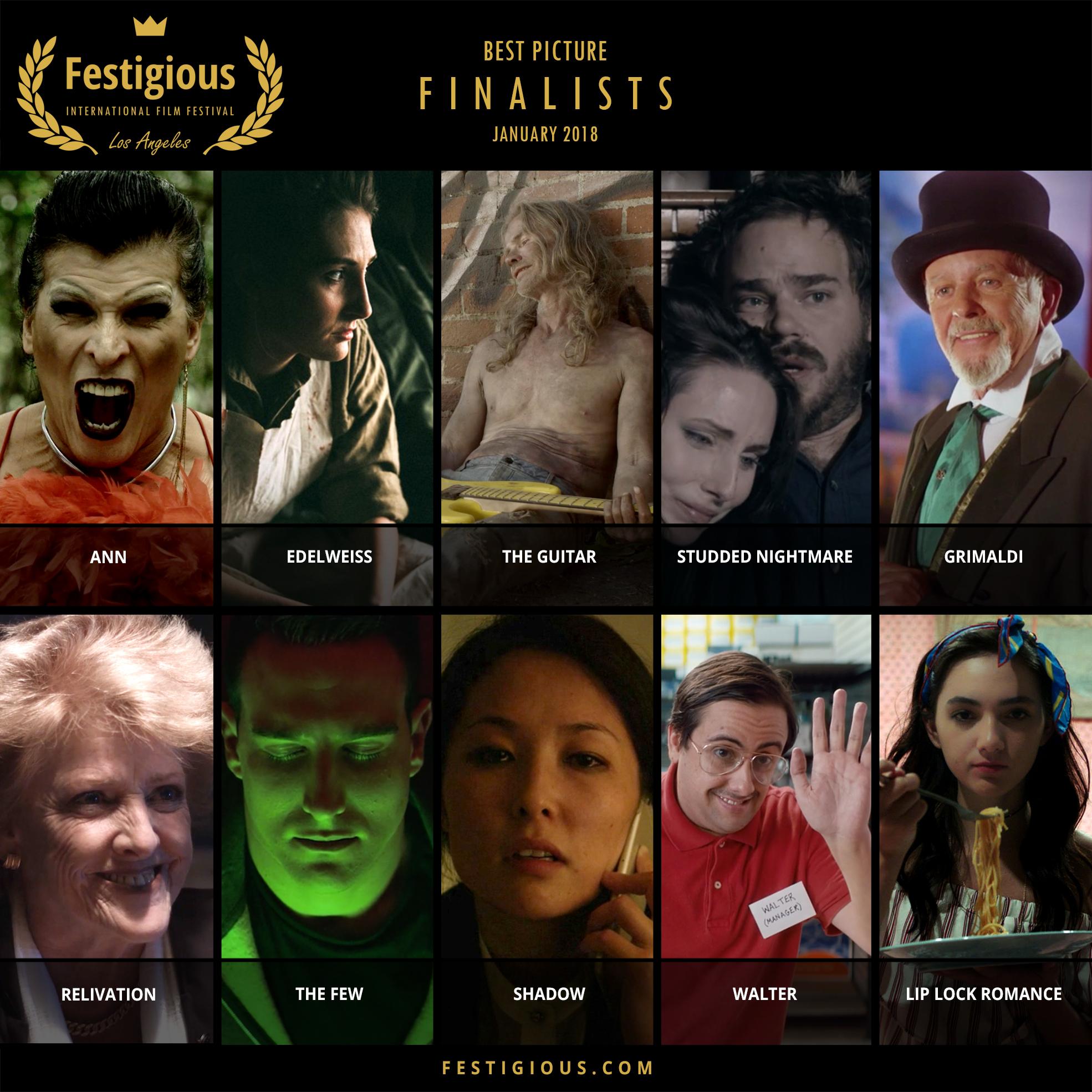 FESTIGIOUS FINALISTS 2018 01