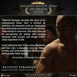 Beloved Stranger - Review