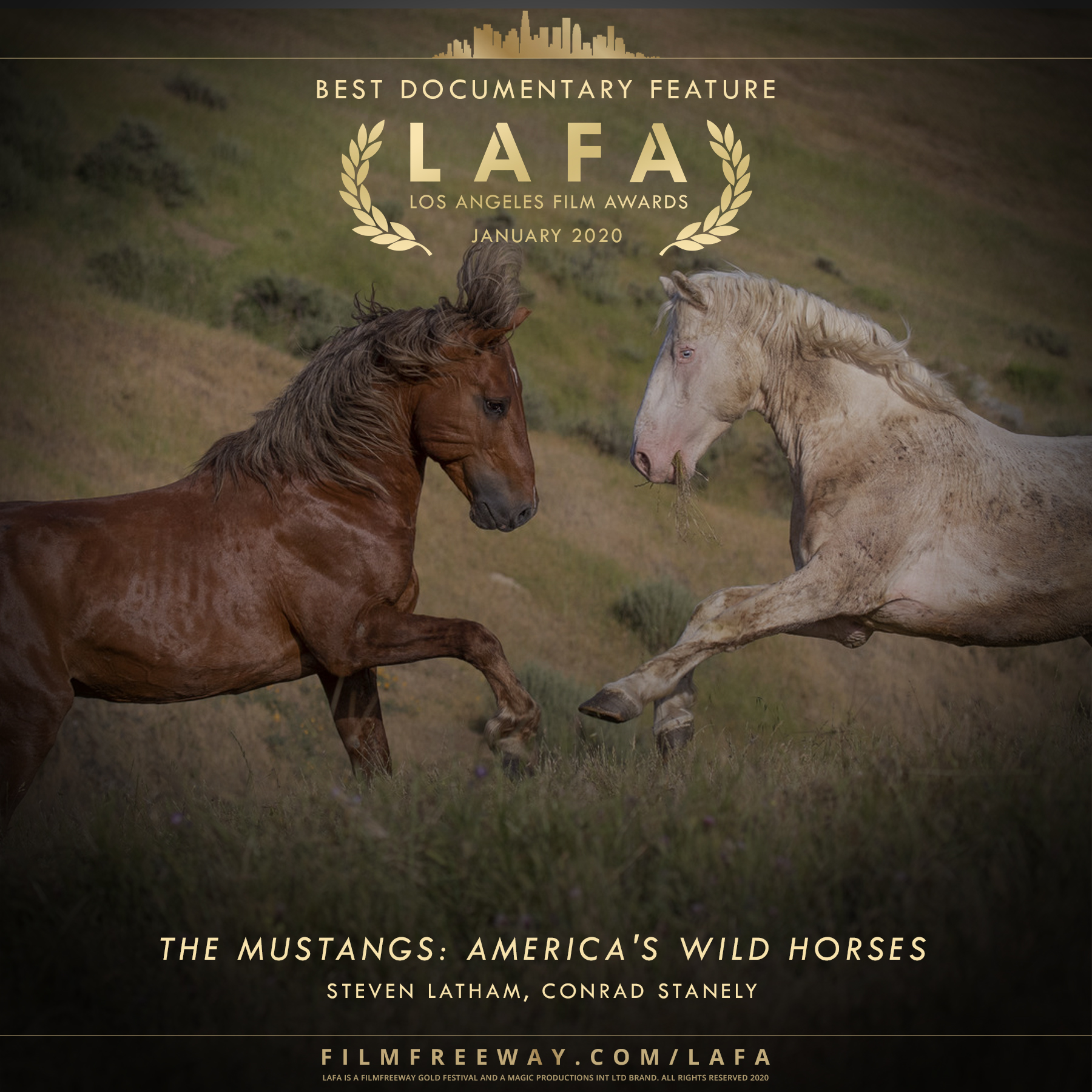 The Mustangs- America's Wild Horses desi