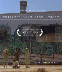 Enapay's long story short