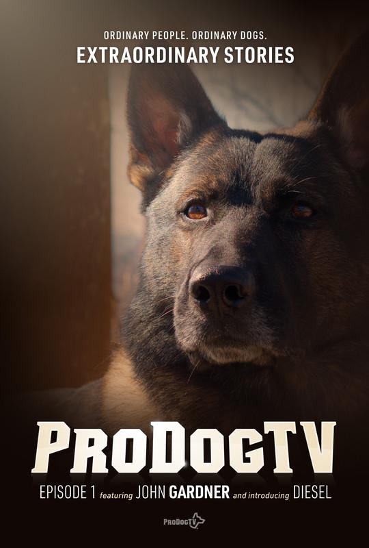 ProDogTV