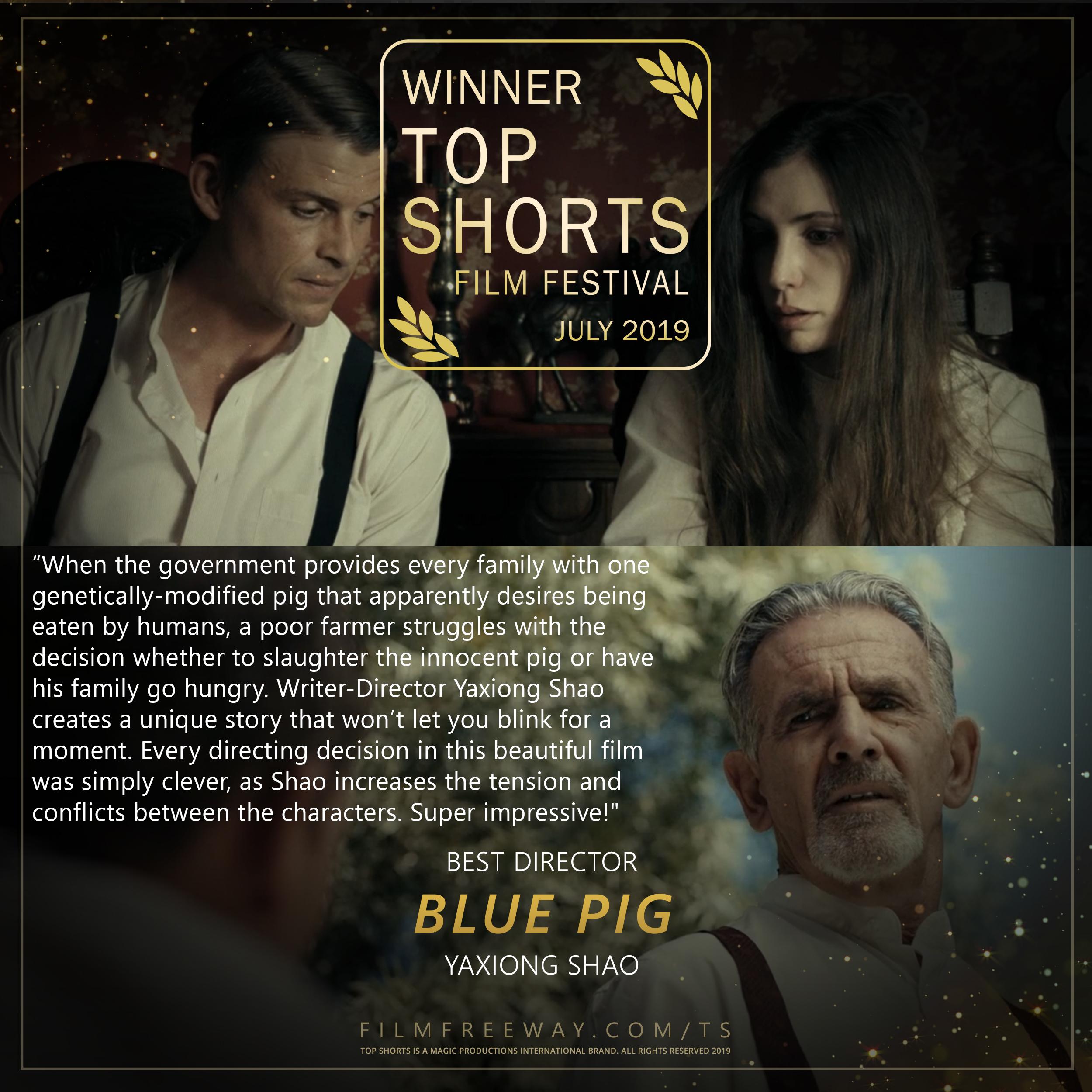 BLUE PIG design