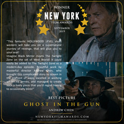 GHOST IN THE GUN review