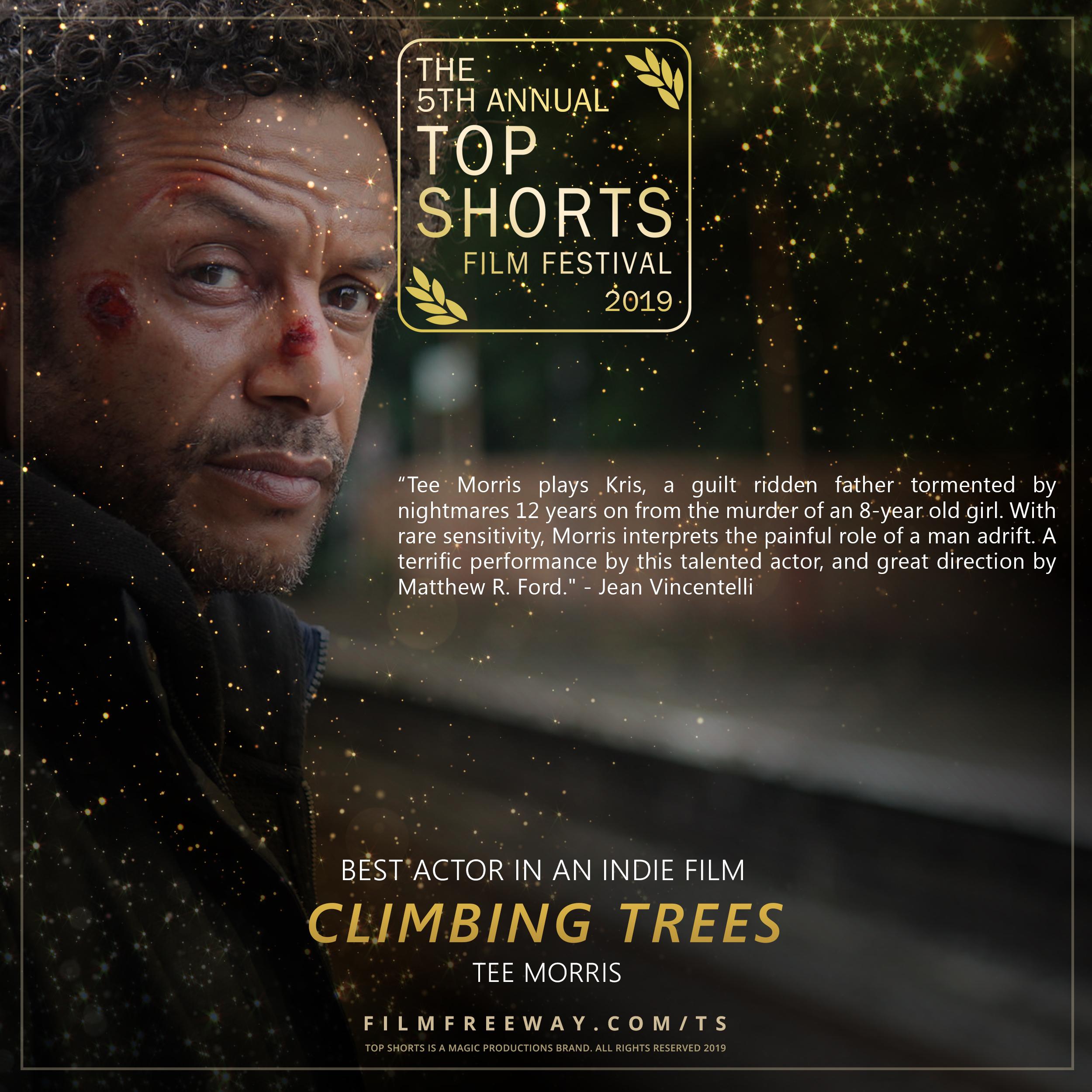 CLIMBING TREES design