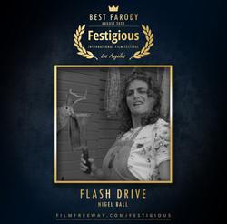 Flash Drive  design