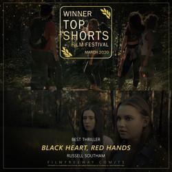 Black Heart, Red Hands design
