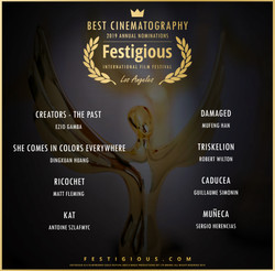 Festigious Best Cinematography