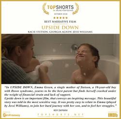 2018 10 Best Narrative Film - Upside Dow