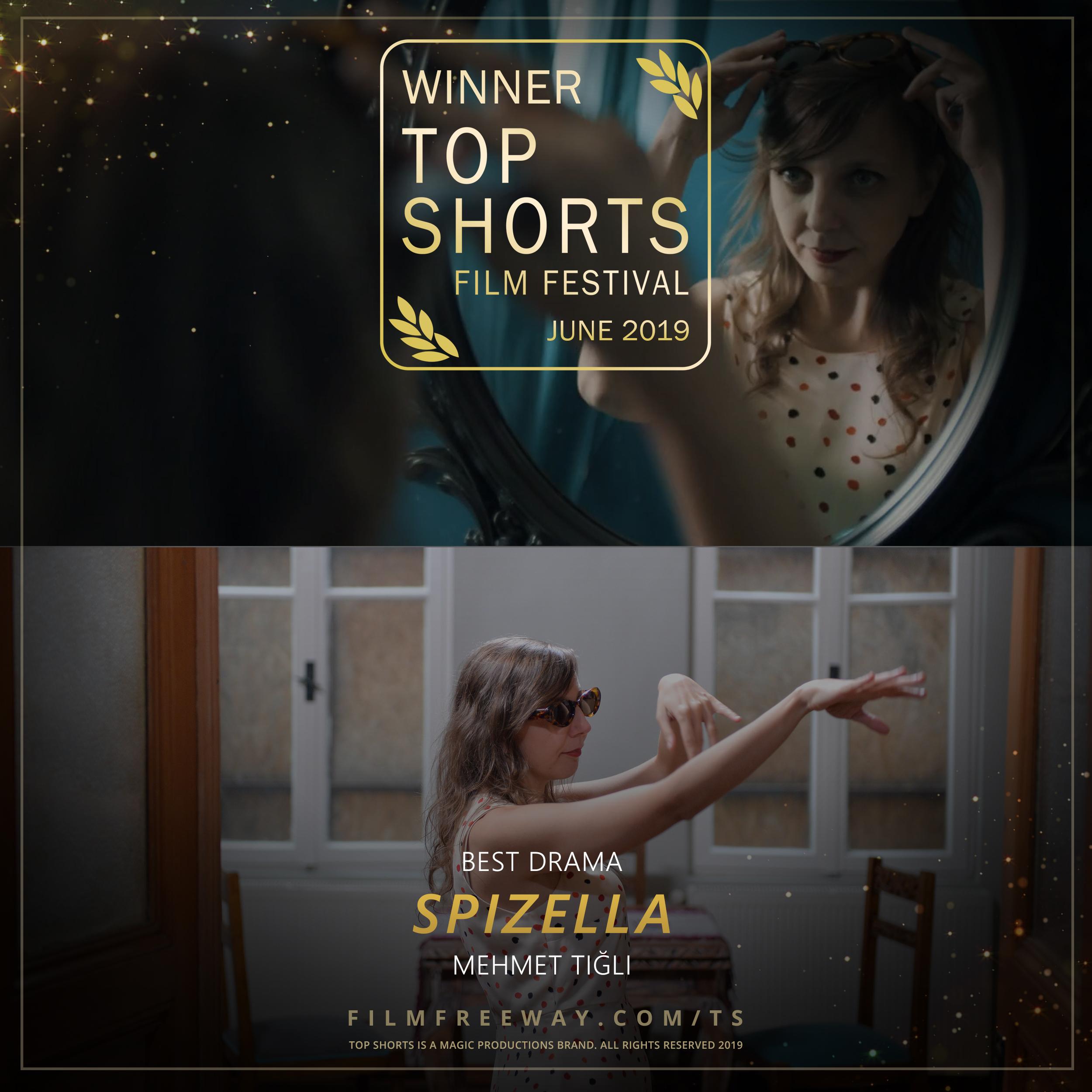 Spizella design