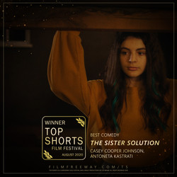 The Sister Solution design