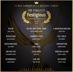 Festigious Screenplay Finali