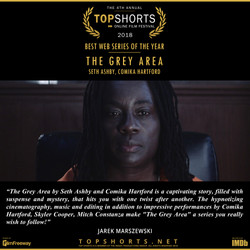 The Grey Area - Best Web Series