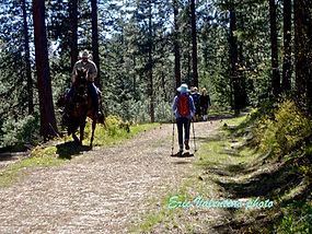 Horse and Hikers photo