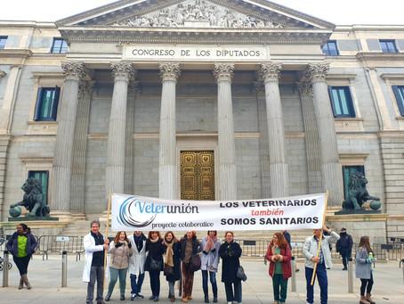 Veterunión en la Manifestación del 17N en Madrid
