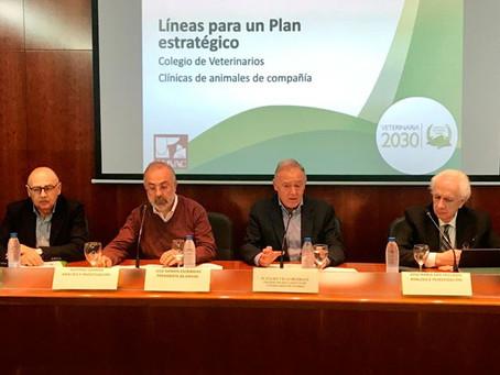 Colvema y AMVAC presentaron el plan estratégico para las clínicas de pequeños animales