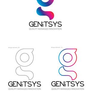 GENiTSYS Branding 02.jpg