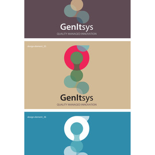 GENiTSYS Branding 08.jpg