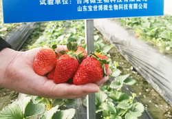 WeChat 圖片_20171213180646