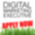 Job advert graphic digital marketing exe