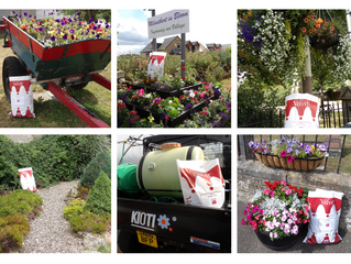 Supporting Milnathort in Bloom