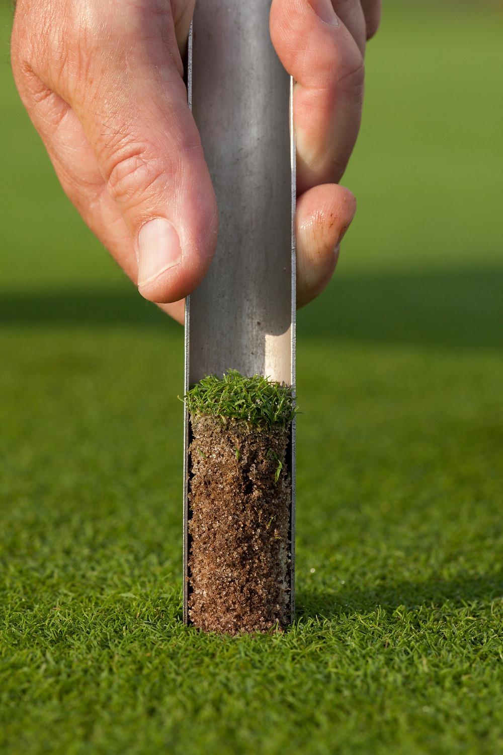 Turf soil testing golf course fertiliser supplier