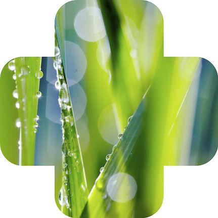Aminaid amino acid biostimulant grass and lawn care