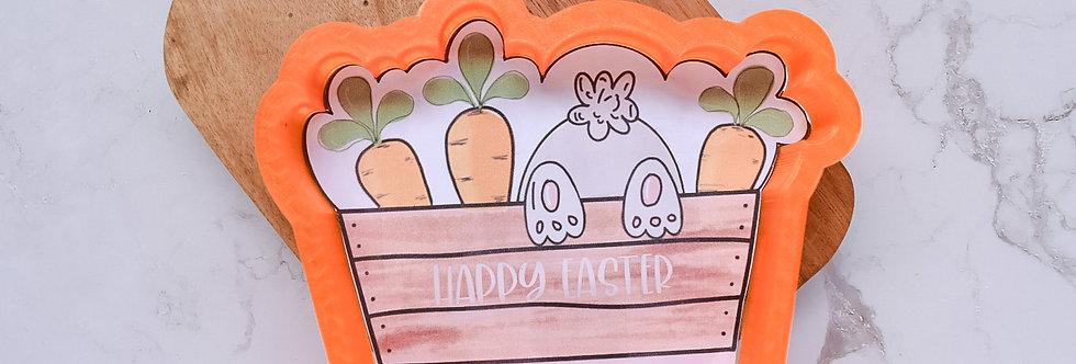 Bunny in Bucket