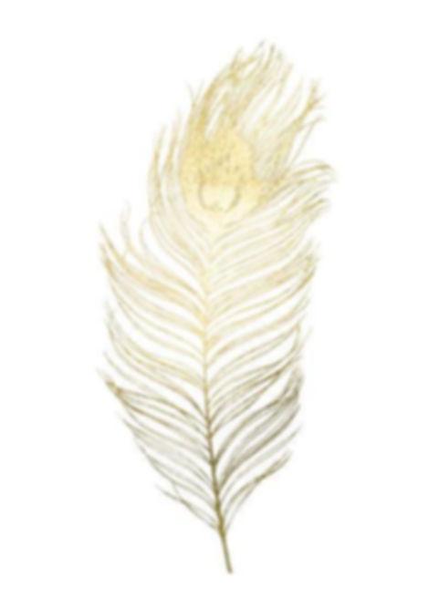 gold-foil-peacock-feather-ii_u-l-f93xk50