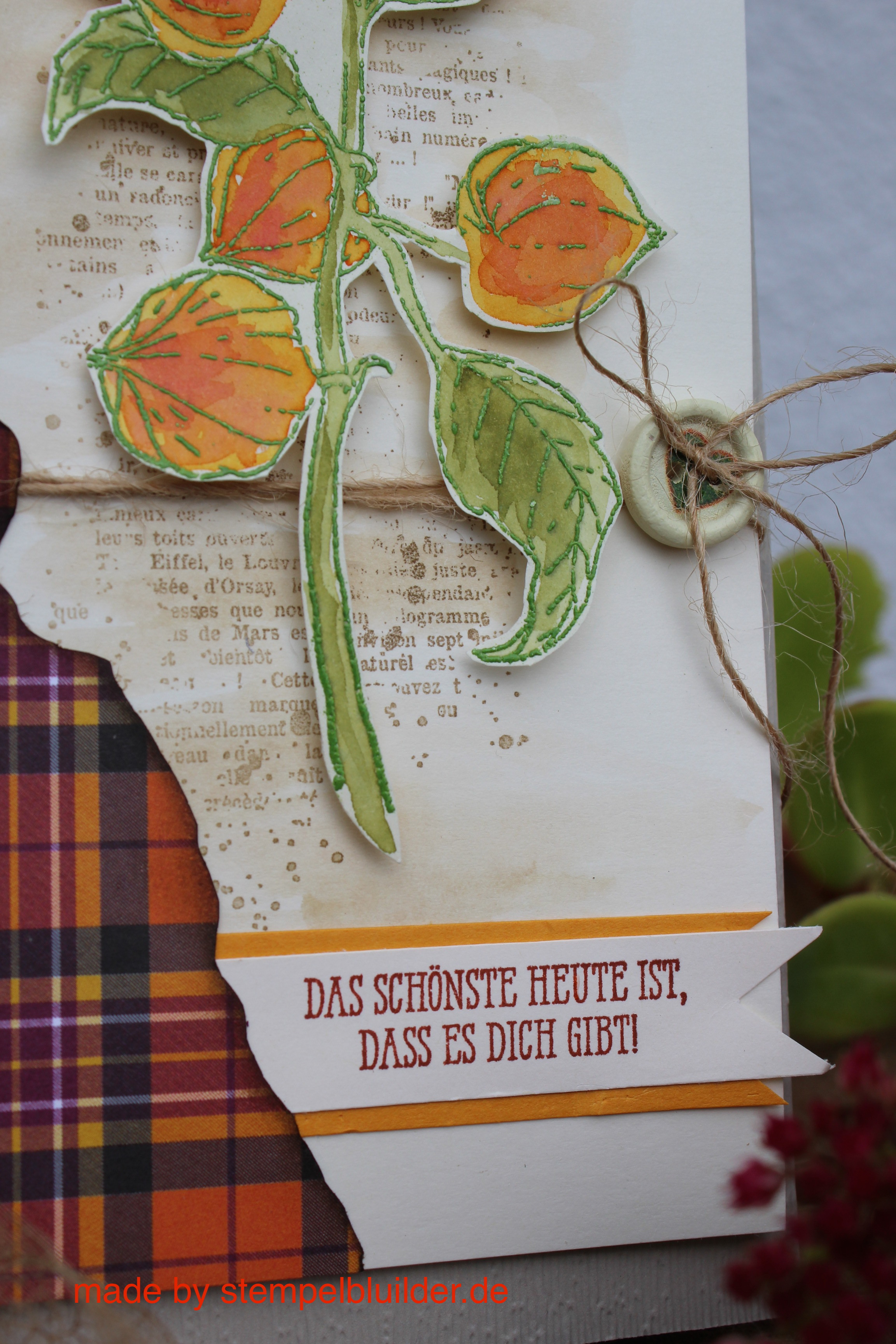 HerbstkarteLampionblume2