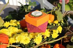 HerbstDiamantbox2_2019