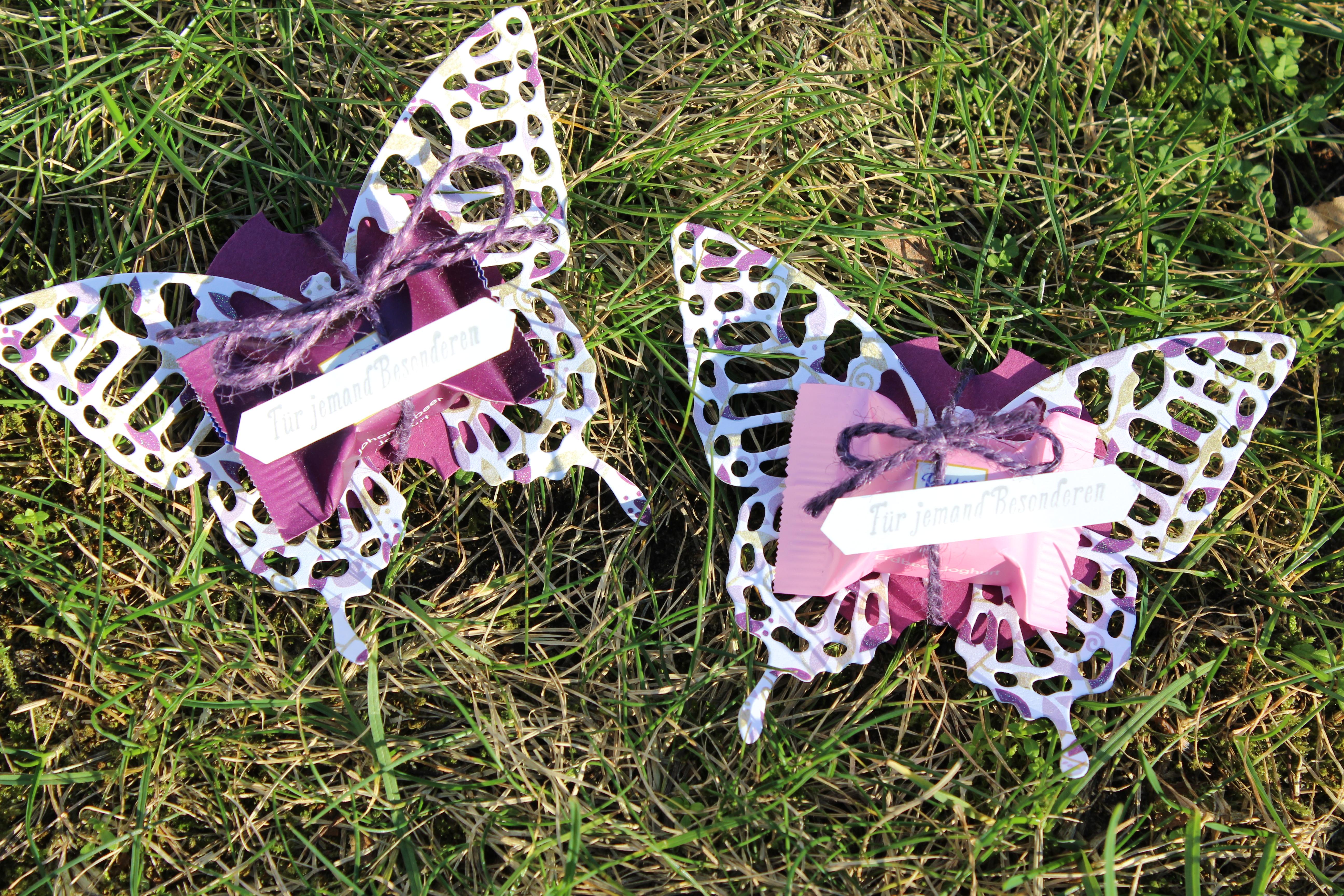 Schmetterling-Goodies