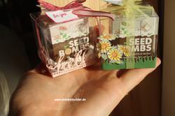 Seedbombs2