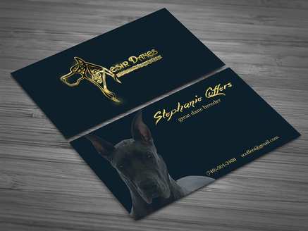 Aesir Danes Business Cards