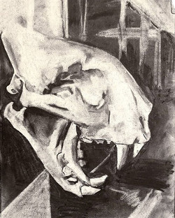 Quick preparatory study for my charcoal fossil drawing class #carbononcarbon tomorrow.jpg