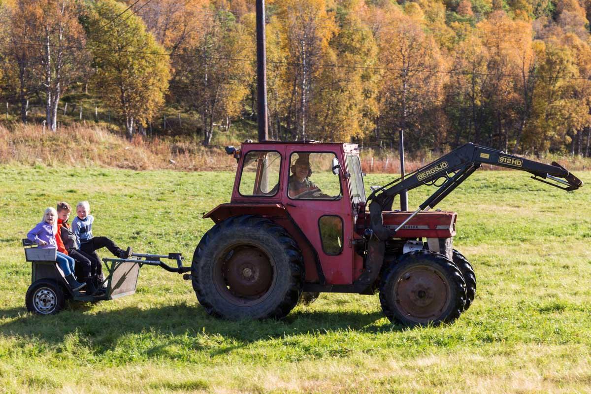 IMG_9606_Kjøre_med_traktor_og_vogn
