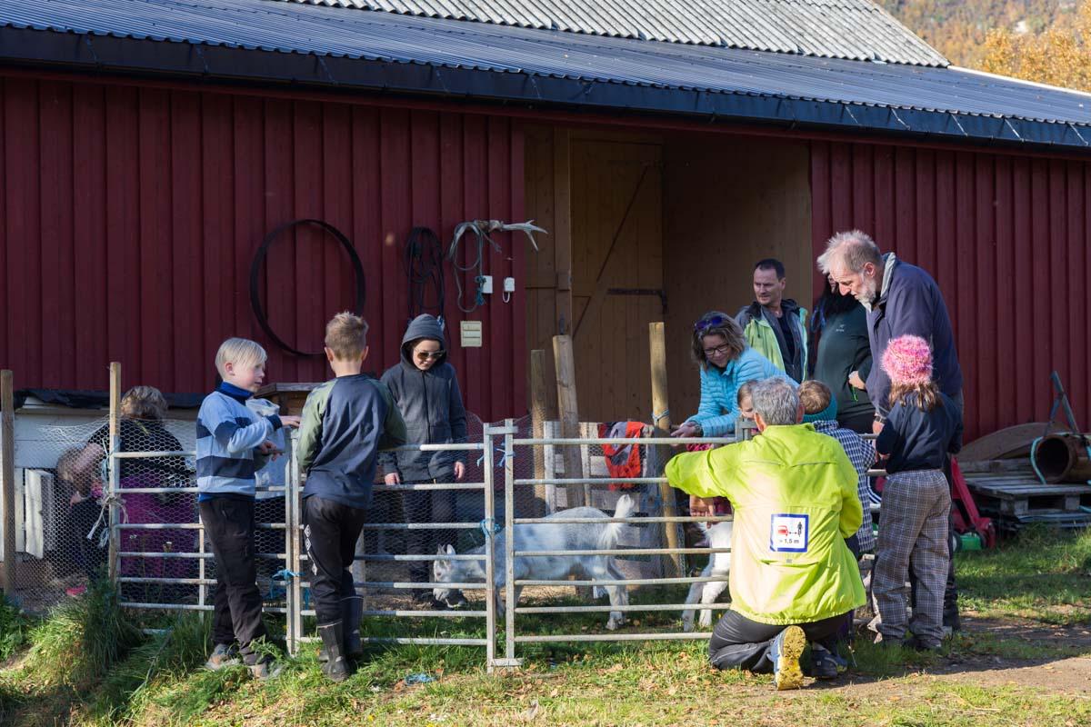 IMG_9561 Kos med kaniner og geitekje